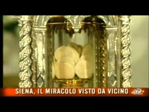 Miracolo Eucaristico alla Basilica di San Francesco a Siena