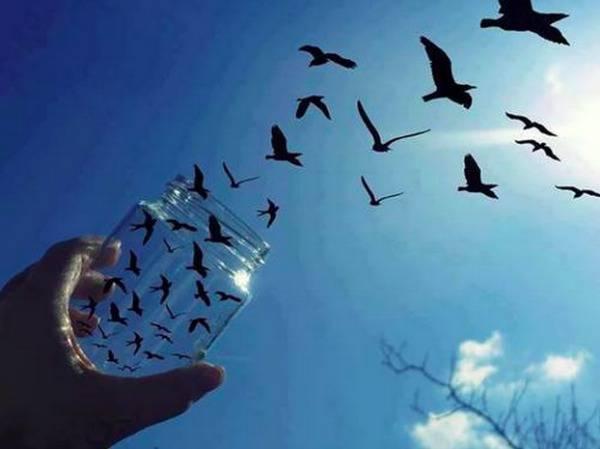 """La libertà: """"Un dono molto impegnativo di Dio"""" - La Luce"""