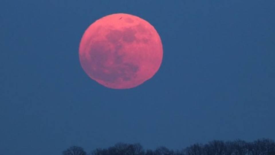 luna-rosa-3