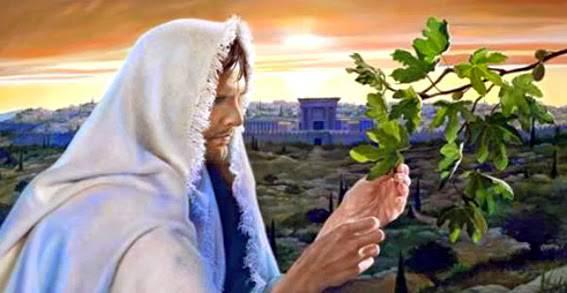 Fico seccato Evangelho 567 cpl liv contr JesusVideira761