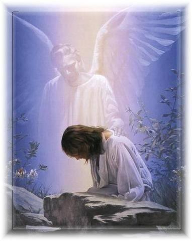Preghiera per chi è nella Prova: Salmo 31