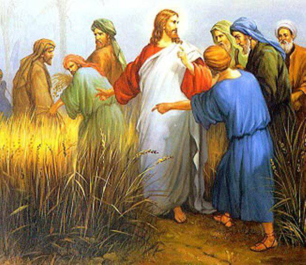 La Parola del giorno dal Vangelo secondo Marco 2,23-28. - La Luce ...