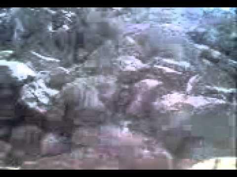 Video Grande Miracolo a Medjugorje. Nessuno può negare l'evidenza di ciò che è accaduto
