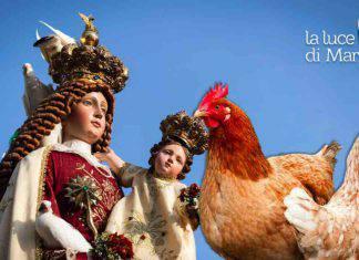 Apparizioni: Madonna delle galline