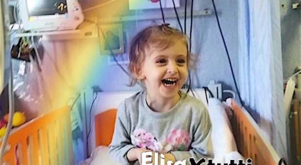 la piccola Elisa sui salverà trovato donatore