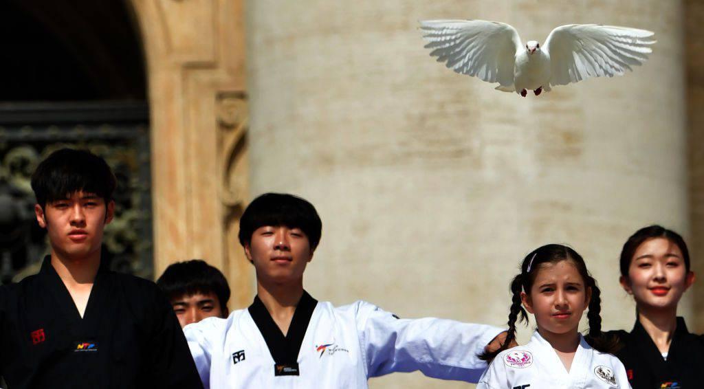 Udienza Genarale: gli atleti delle due Coree mandano un bellissimo messaggio di pace