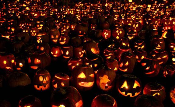 studente accoltellato ad Halloween