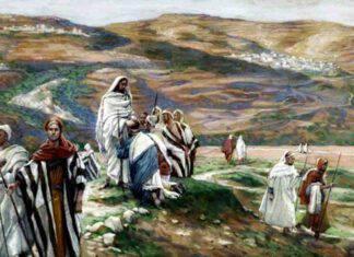 Vangelo Luca li inviò a due a due