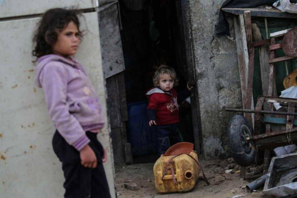 Misericordia - Gaza