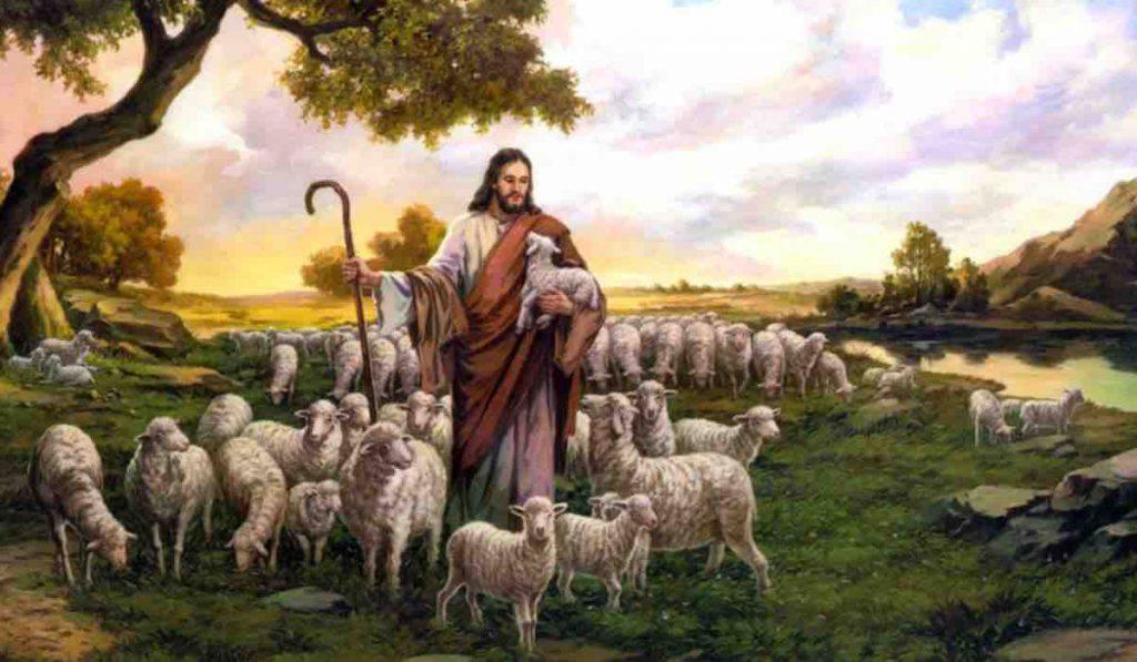 Vangelo di oggi: Giovanni 10,1-10 - commento Papa Francesco