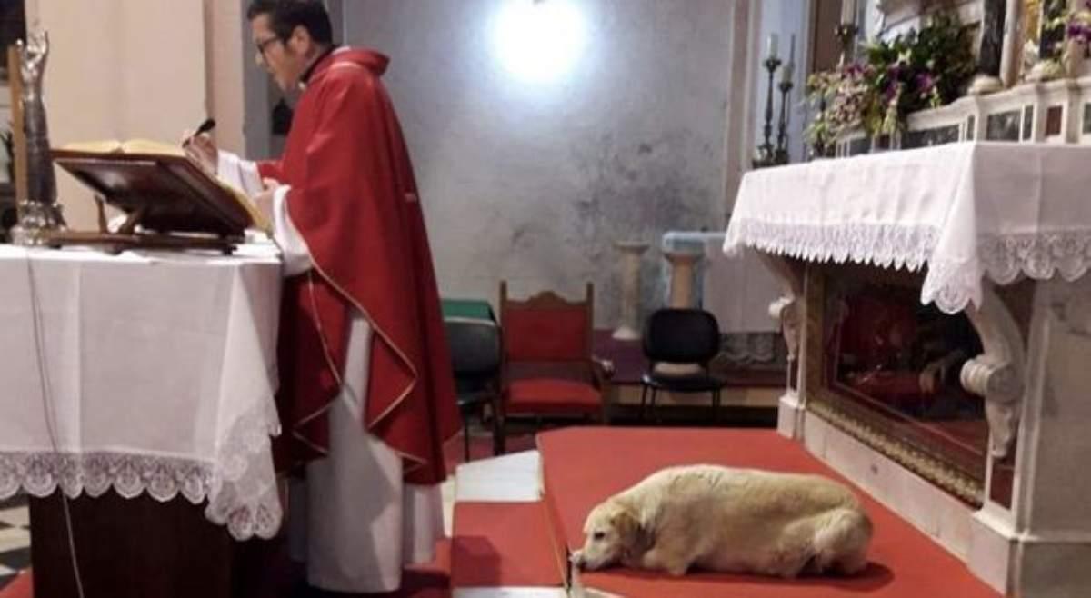 Frosinone, parroco dice messa insieme ad un amico a 4 zampe