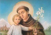 Sant'Antonio di Padova frate
