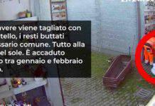 cadaveri sezionati col coltello nel cimitero Prima Porta di Roma