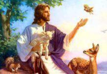 Gesù animali paradiso