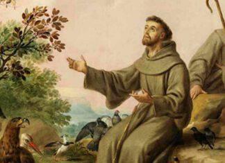 San Francesco Assisi vita e morte