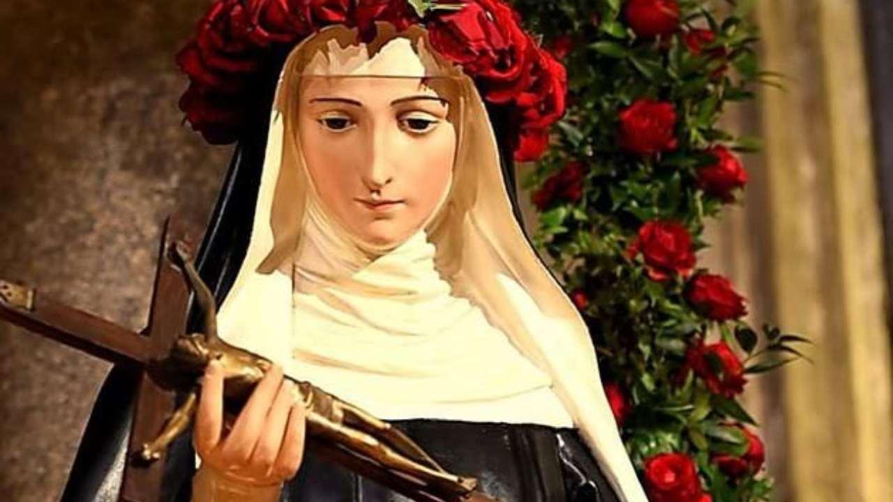 Santa Rita rose