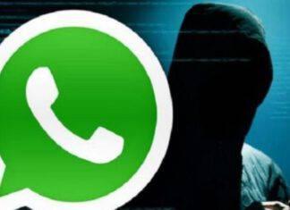 frode whatsapp
