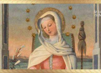 Maria Mater Admirabilis
