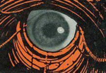 occhio grande fratello
